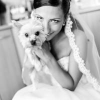 Nevěsta s mazlíčkem (© Jan Jirouš)