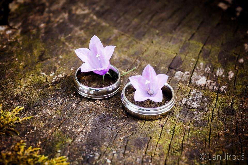 Svatební prstýnky, luční kvítí (© Jan Jirouš)