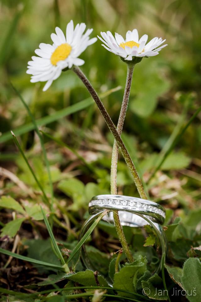 Snubní prstýnky v trávě (© Jan Jirouš)